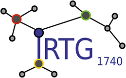 Logo of the International Research Training Group Dynamical Phenomena in Complex Networks