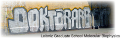 Logo of the Doctoral Program Molecular Biophysics