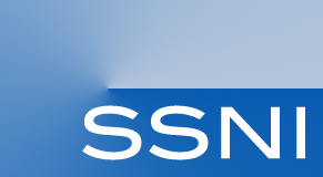 Logo of the International Graduate Research Training Group (IRTG) on Self-Assembed-Soft-Matter Nanostructures at Interfaces